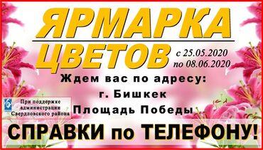Ярмарка цветов на площади Победы С 25 мая по 8 июня Адрес: г. Бишкек
