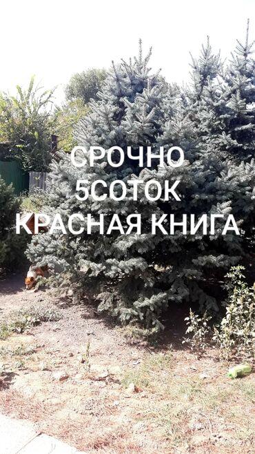 шины бур16 в Кыргызстан: Продам 5 соток Строительство от собственника