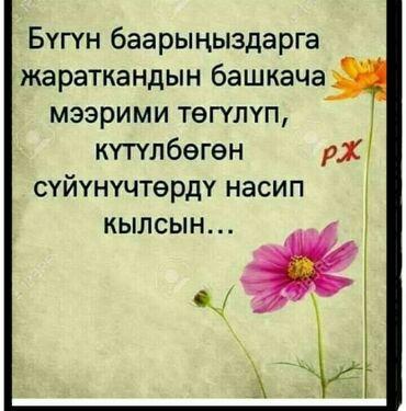 Работа - Узген: Другие специальности