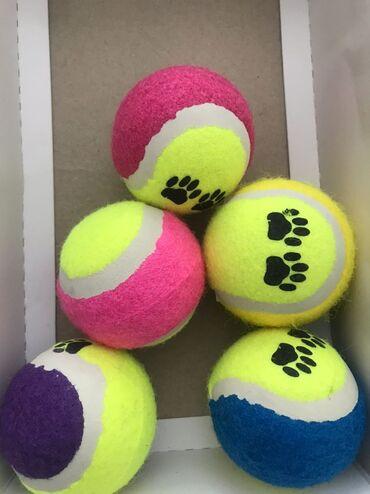 Мячики для собак и кошек. Игрушки для собак и кошек. Игрушки для