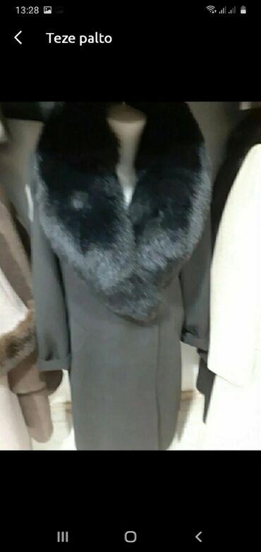 Teze palto