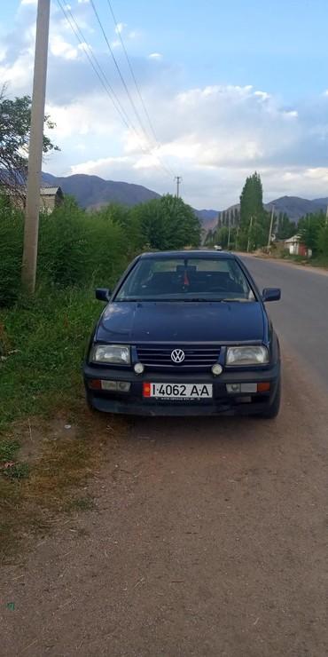 Volkswagen Vento 1993 в Чаек
