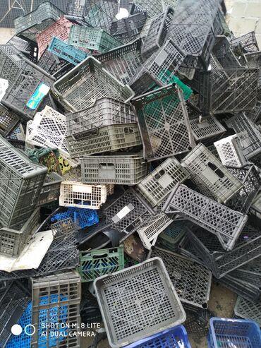Куплю пластиковые ящики и катушки килограмм по 12 сомов самовывоз