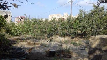Bakı şəhərində Xətai rayonu zığ yolu. Duzlu göl yaxınlıgında yaşayışlı ərazidə 3 sot