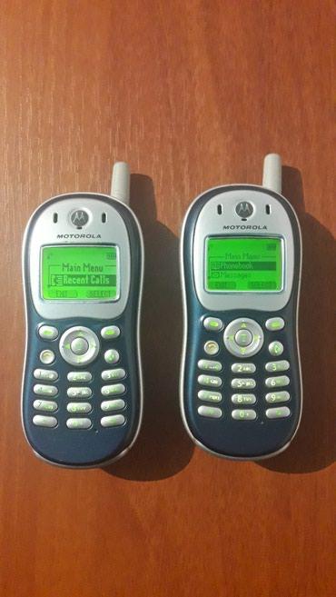 motorola в Кыргызстан: Продаю сотовые телефоны Motorola стандарта TDMA (Кателовские)