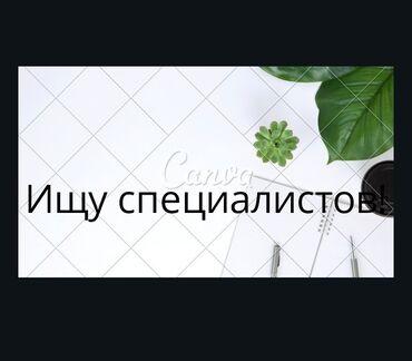 Другие специальности - Кыргызстан: Другие специальности