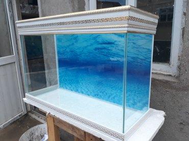 Bakı şəhərində Teze hazirlanip versage akvarium 120 litrelik