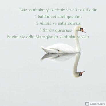 Əməkdaş axtarışı (vakansiyalar) - Azərbaycan: Yalniz xanimlar.Komandamda xanimlar oldugu ucun