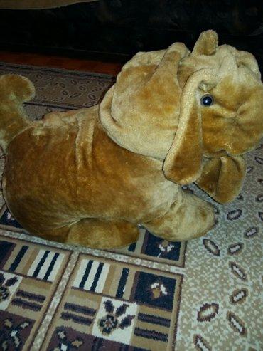 Большая и качественная собачка-шарпей