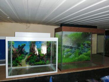 Akvarium 20-29m