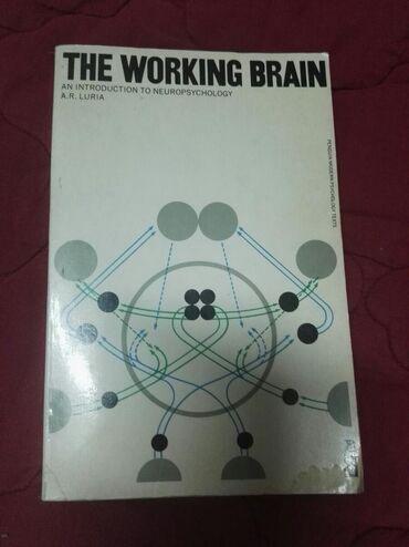 Knjige, časopisi, CD i DVD | Mladenovac: The working brain