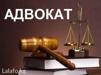 Любые юридические услуги! Уголовные, в Бишкек