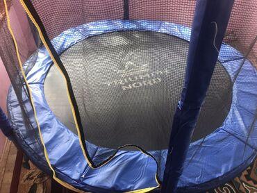 Спорт и хобби - Гульча: Батут спортивный 183 см triumph nord  с сеткой, может поднять до 100 к