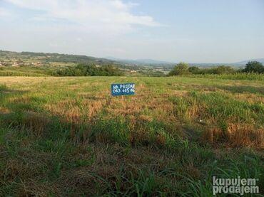 Nekretnine - Srbija: Na prodaju 100 ares Poljoprivredno zemljište Vlasnik