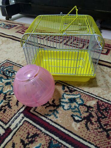 Клетка для хомяка + шар