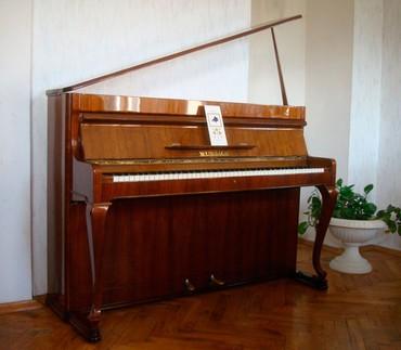 Самое красивое пианино марки Weinbach от фабрики Petrof, модель