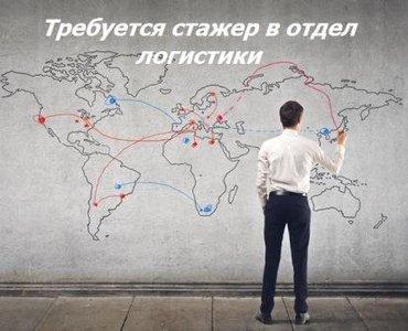 Требуется стажер в отдел логистики в Бишкек