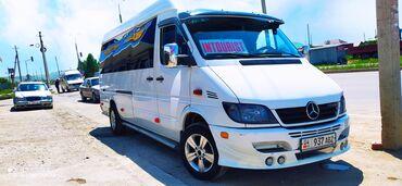 перевозка в Кыргызстан: Международные перевозки, Региональные перевозки, В аэропорт Бус | 18 мест