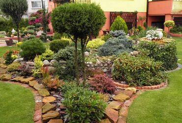Ландшафтный дизайнПрофессиональный уход, посадка.Сад, огород, клумбы