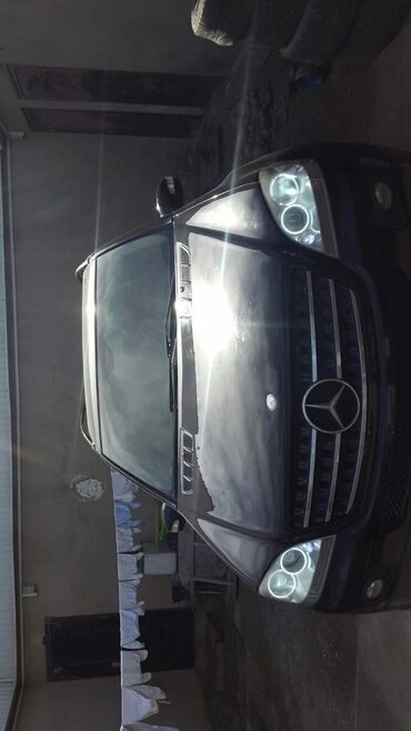 Mercedes-Benz ML 350 3.5 л. 2007 | 300 км