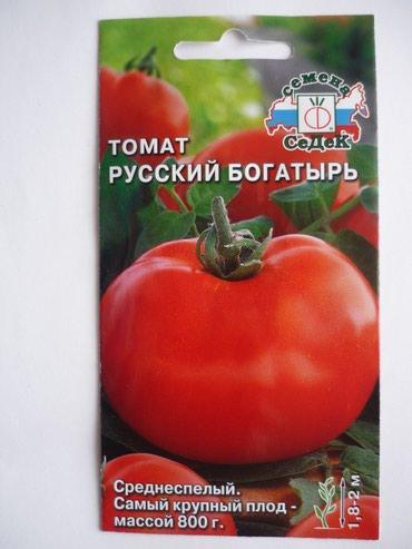 Bakı şəhərində Томаты.Семена лучших известных