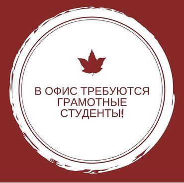 telefon zte v5 в Кыргызстан: В офис требуется грамотные студенты  (Со средним и высоким образование