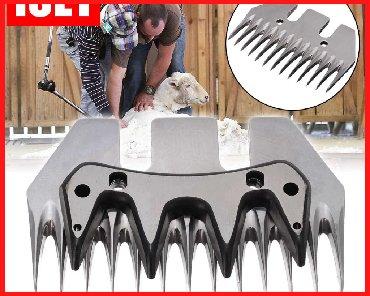 типы животных в Кыргызстан: Высококачественный Режущий нож для стрижки овец из нержавеющей стали с