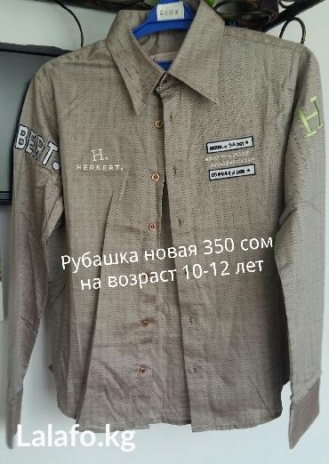Продаю новую рубашку , на мальчика 10-12 лет. Цена 350 сом в Лебединовка