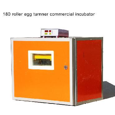 Zavod istehsali inkubator, çıxış faizi 95dən yuxarı, universaldi, bütü