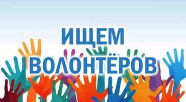 Работа - Таджикистан: В образовательный центр срочно требуются Волонтеры из числа учащихся и