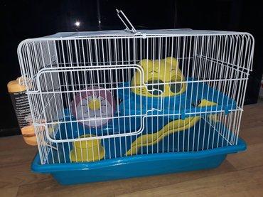 Bakı şəhərində Xamyak cunqarik(hamster)ucun teze iri qefes satilir.