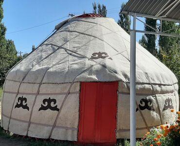 Уй канаттуулары - Кыргызстан: Срочно Боз уй сатылат 75 баш 5.5 канат