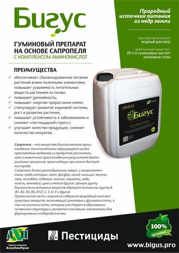 Бигус – регулятор роста растений на в Бишкек