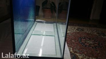 Bakı şəhərində Teze hazirlanip 325 litrelik akvarium 10mll wuwenin qalinliqi qapaqi- şəkil 2