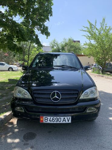 Mercedes-Benz ML 270 2.7 л. 2004 | 2900000 км