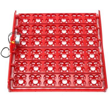 Bakı şəhərində 56 yumurtaliq ve 36 multi yumurtaliq inkubator latoklar motorla bir
