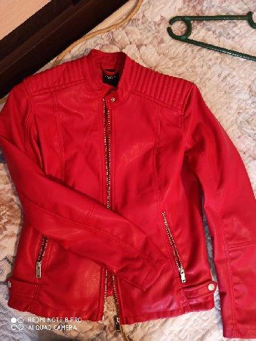 дубленка кожа в Кыргызстан: Продаю пиджак кож зам. Качество отличное . Фирма Calliope размер м