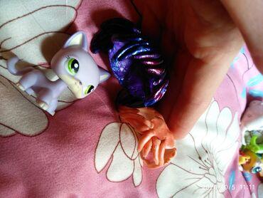 котенок в Кыргызстан: Little pet shop Котенок пет коллекция
