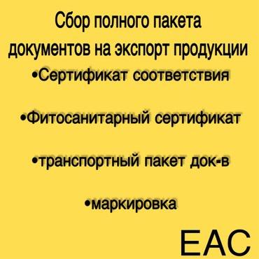 Помощь в сборе полного пакета в Бишкек