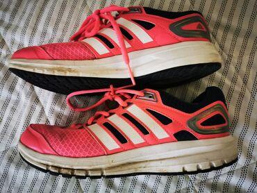 Adidas patike za trcanje i fitnes
