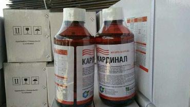 КАРДИНАЛ — инсектицид широкого в Бишкек