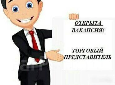 торговый агент с личным авто бишкек в Кыргызстан: Торговый агент. Без транспорта. Без опыта. Полный рабочий день. Моссовет