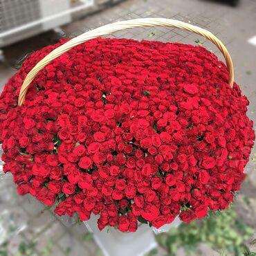 1001 роза Акция 15000сом Если вы хотите огромныйй 5XL букет