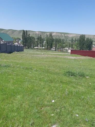 купить-ящерицу-в-бишкеке в Кыргызстан: Продам 10 соток Для строительства от собственника