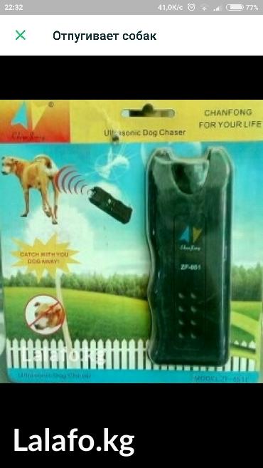 Ультрозвуковой отпугиватель собак. в Кок-Ой