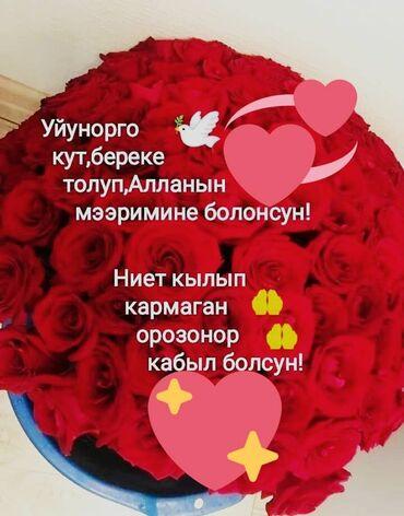 Находки, отдам даром - Кыргызстан: День добрый. Я мать одиночка. Нуждаюсь в вашей помощи. Кто чем может