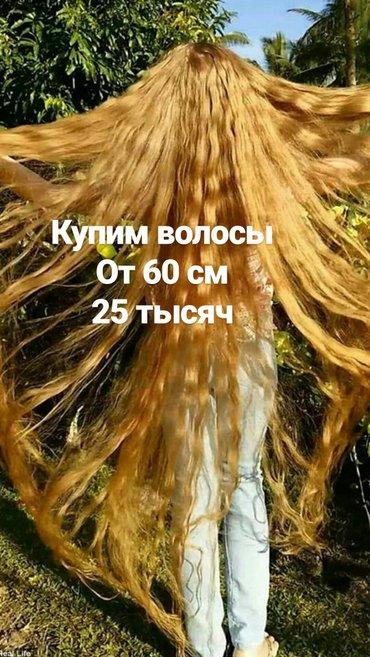 Куплю волосы от 60 см в хорошем в Бишкек