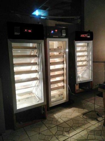 Bakı şəhərində Inlubator Tam avtomatik inkubatorlarin ve cixis aaparatlarinin