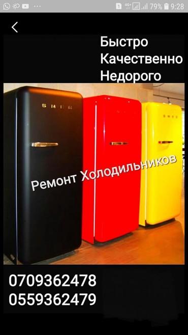 Ремонт холодильников всех видов. в Бишкек