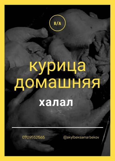 Курица домашняя  Доставка по городу Бишкек от 3 х и выше  По вопросам
